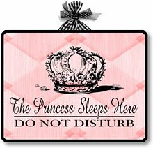 Item 08312 The Princess Sleeps Here Plaque