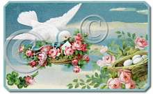 Item 2211 Victorian Dove Pink Shabby Cottage Roses Plaque