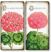 Item 4122 Set of 2 Antique Style Geranium Flower Plaques